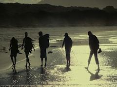 11~4月限定!! フレシネ・ウォーク4日間のロッジ宿泊ガイド付ハイキングツアー