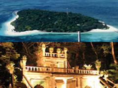 グリーン島とライトアップパロネラパークツアー
