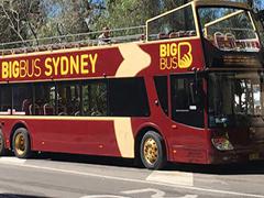 市内観光・シドニー&ボンダイエクスプローラー