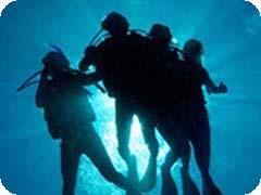 PADIダイブマスターコース(Deep Sea Divers Den)