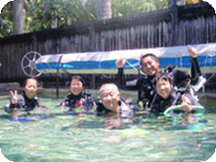 PADI�����ץ�����������������ֺ�û���ե��åĥ?��ȥ��졼�ȥХꥢ���-(Dive 7 Seas)