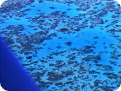30分で空からのグレートバリアリーフ体験!!小型飛行機で行く格安遊覧飛行ツアー
