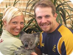 ケアンズの町中でコアラ抱っこ可能!ケアンズ・ワイルドライフドーム