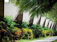 パームバンガロー・ハミルトン島[簡易キッチン・無料インターネット付](Hamilton Island Palm Bungalows )