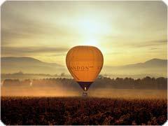 ワインの里ヤラバレーで熱気球[メルボルン発 ]