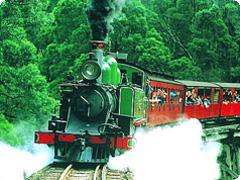 パッフィンビリー蒸気機関車とダンデノン丘陵・半日ツアーGOGO TOURS [日本語ガイド付]