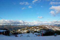 オーストラリアでスキー!アルペン・マウントブラー日帰りツアー・Great Sights [メルボルン発]