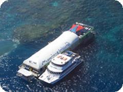 グレートバリアリーフ1日クルーズ・リーフでの滞在時間5時間のゆったりツアー・ケアンズ発[Reef Magic社]