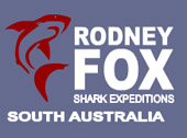 RODNEY FOX GREAT WHITE SHARK EXPEDITIONS