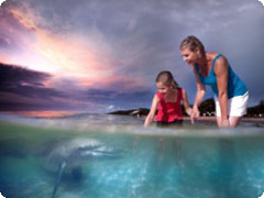 ���롼�ޡ��磻��ɡ��ɥ�ե�������-��Tangalooma Wild Dolphin Resort)
