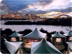 シドニー・タロンガ動物園へ宿泊するオーバーナイトサファリツアー