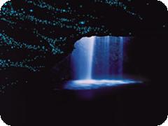 世界遺産ナチュラルブリッジ 土ボタルツアー・日本語ガイド付・JPT TOURS社[ゴールドコースト発] 口コミ情報