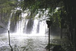 熱帯雨林や山の人気ツアー