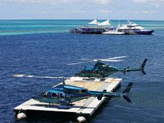 ヘリコプターで行くリーフワールド・リーフディスカバリーツアー・ハミルトン島発