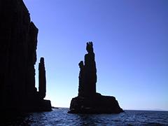 タスマニア・ブルーニー島ツアー