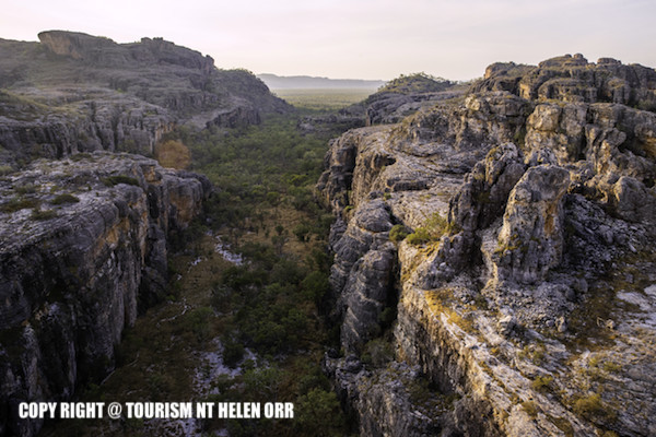世界遺産カカドゥ国立公園・クロコダイル&ロックアート巡りツアー
