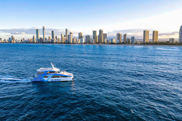 ホエールウォッチングクルーズ・Sea World Cruises社 [ゴールドコースト発]