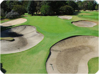 The Yarra Yarra Golf Club