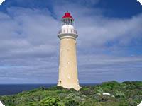 シーリンク・カンガルー島 ハイライト1日観光
