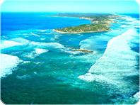 夏季限定・モーニントン半島・マリンワンダーランド、カヤック又はシュノーケリングツアー
