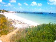 格安ピナクルズ砂丘とビーチ1日ツアー