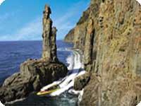 タスマニア・ブルニー島ツアー