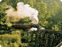パッフィンビリー鉄道&ワイナリー巡り